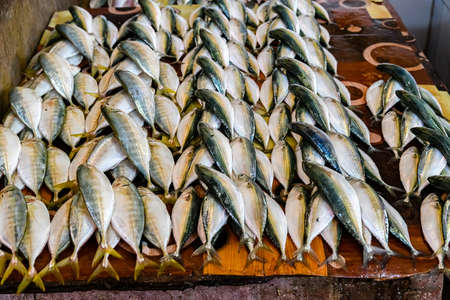 Tuna fish for sale at fish market