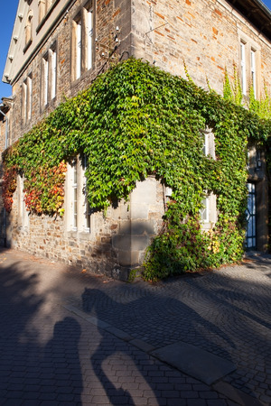corner of house: traditional corner house covered in ivy Stock Photo