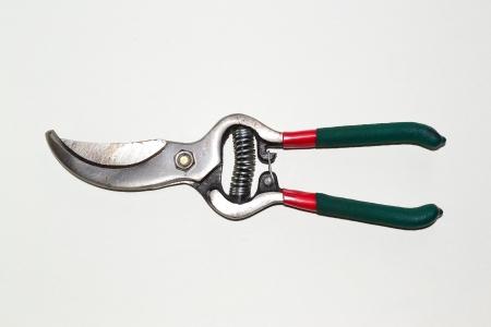 secateurs: secateurs Stock Photo