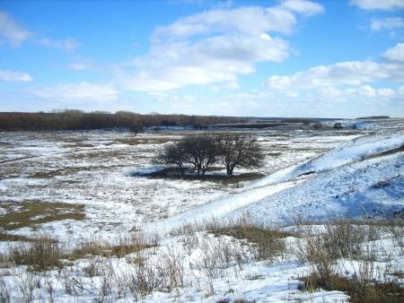 wintrily: paesaggio invernale