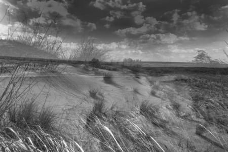 surreal landscape: Surreal landscape in the Sands