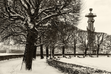 Landmark in St Petersburg, Russia: rostral column and a park with trees on the Vasilievsky Island. Black and white retro photo. Фото со стока - 89343522