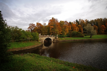 View on river and bridge in the park photo
