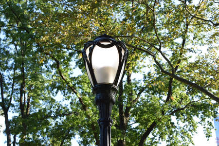 Lamp Post in the park