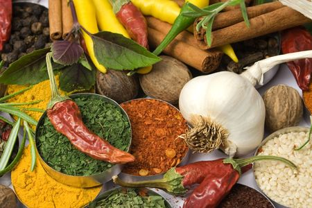 Various colorful spices and herbs used for seasoning indian food Stock Photo - 3521854