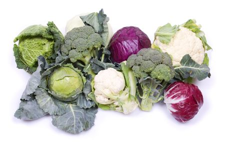 All sorts of cabbage isolated on white background photo