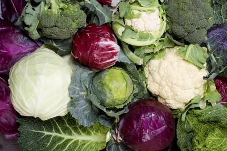 Assortimento di vari tipi di verdure cavolo Archivio Fotografico - 4512708