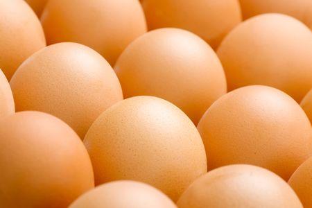 chicken egg: Chicken egg horizontal background close up image