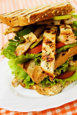 toasted sandwich: Delicious toasted sandwich with grilled chicken, tomato and lettuce