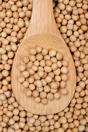 macrobiotic: Close-up image of raw soy bean on wooden spoon