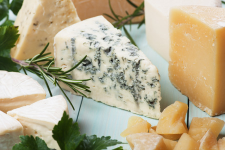 Slice of gorgonzola cheese with herbs and other cheeses Standard-Bild