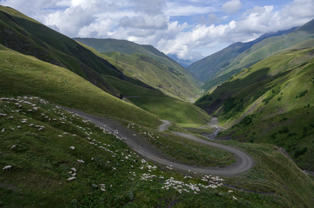 cuve: Sheeps crossing the serpentine road. Panorama of mountain valley from top of Datvisjvari  Pass, Georgia, Europe