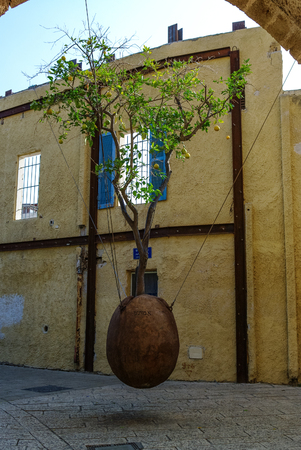 orange tree: Orange tree in stone vessel levitating in the courtyard at old city Jaffa . Israel