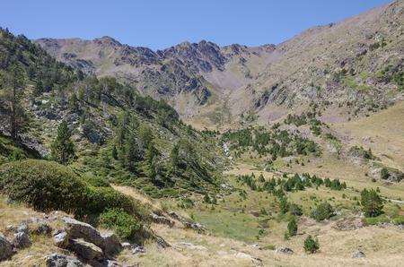 coma: Mountain valley in Pyrenees near Coma Pedrosa peak. Andorra