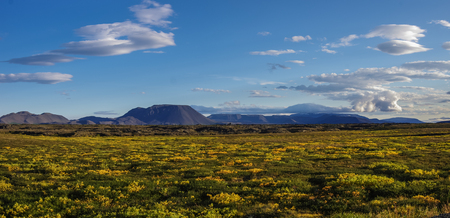 lava field: Moss covered lava field and volcano mount near lake Myvatn summer landscape, Iceland