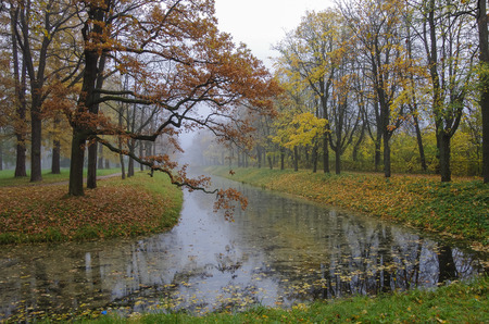 city pushkin: Golden autumn with colorful leaves. Fog over canal in Alexander Park in Pushkin City, suburb of St.Petersburg, Russia. Stock Photo