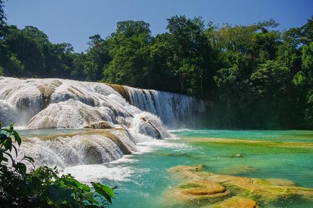azul: Cascadas de Agua Azul waterfalls. Agua Azul. Yucatan. Mexico