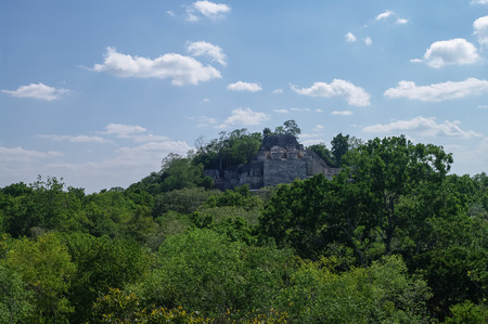 calakmul: The pyramid in the complex rises over the jungle of Calakmul, Mexico