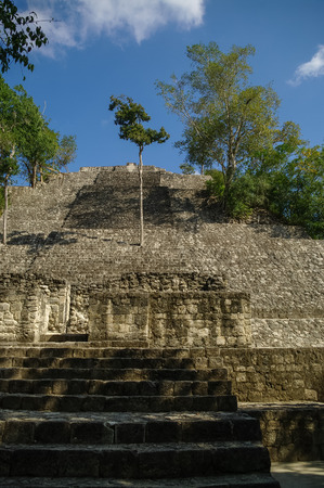 calakmul: Steps of the pyramid stairs. Structure of 1  in the complex rises over the jungle of Calakmul, Mexico