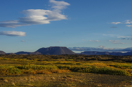 covered fields: Moss covered lava field and volcano mount near lake Myvatn summer landscape, Iceland