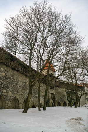 Stable Tower and medieval town wall walkway in Old Tallinn at Winter.  Estonia Editorial