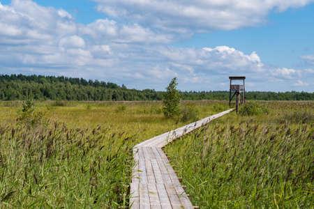"Birdwatching tower and footbridge across the swamp at Bolshom rakovom (Big Crayfish) Lake. Eco route in the ""Rakovyye ozera"" (Crayfish lakes) nature reserve, Leningrad region, Russia"