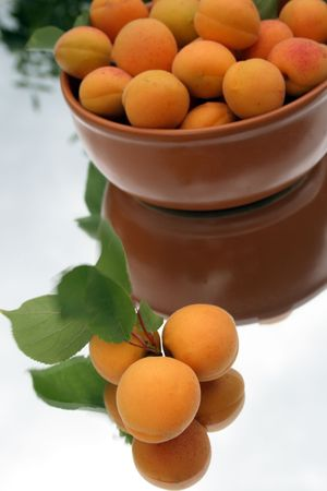 apricots on the mirror Stock Photo