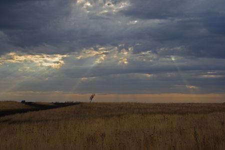 shafts: Wellen von Licht leuchtenden Ackerland an einem kalten dunklen Tage