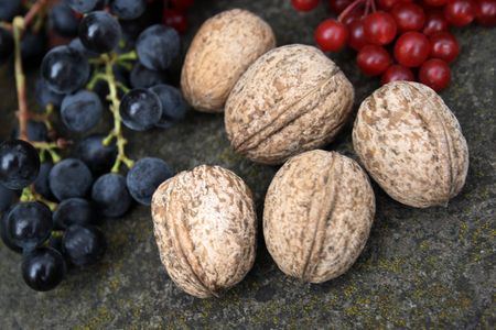 guelderrose: Grapes, guelder-rose and walnuts on a stone