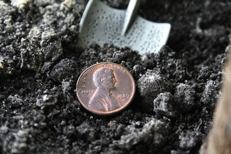 dime: Concept of profit: Treasure of the liliputian - 1 dime