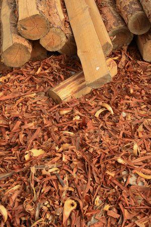 beroofd: Timmer man werken: beroofd met dreven schors, liggend op aarde  Stockfoto