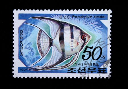 postmail: A stamp printed by DPR KOREA (North Korea) shows a fish Pterophyllum eimekei, statp from series