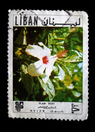 postmail: A stamp printed in Liban show orchid cirla 1970s-1980s Stock Photo