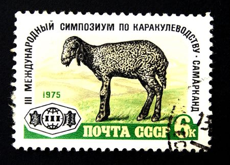 A stamp printed in the USSR shows astrakhan lamb, circa 1975 photo