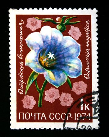 magnific: A stamp printed in the USSR shows Ostrowskia magnifica, circa 1974