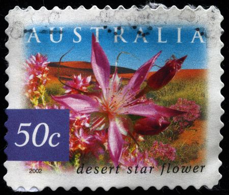 AUSTRALIA - CIRCA 2002: A stamp printed in Australia shows image of a desert star flower, series, circa 2002  photo