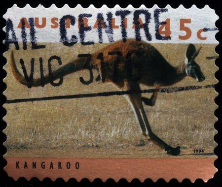 AUSTRALIA - CIRCA 1994: A stamp printed in Australia shows Kangroos, series, circa 1994  photo