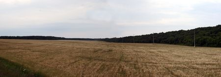 batallon: Batallas de tanques en Prokhorovka - la batalla de tanques m�s grande en la historia de la Segunda Guerra Mundial. Panorama del campo, donde un batall�n de Peter Ivanov hizo famoso gran avance en la defensa alemana