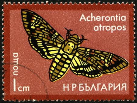 BULGARIA - CIRCA 1975: A stamp printed in Bulgaria shows Butterfly Acherontia atropos, circa 1975 Stock Photo - 8330234
