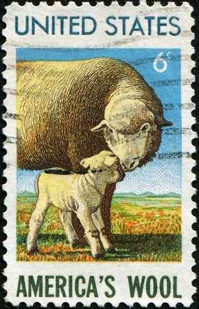 USA - CIRCA 1965: A stamp printed in  United States honoring American Wool Industry shows sheep with lamb, circa 1985 photo