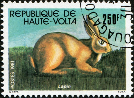REPUBLIC OF UPPER VOLTA, BURKINA FASO - CIRCA 1981: A stamp printed in Republic of Upper Volta shows draw Lapin - Rabbit, circa 1981 Stock Photo - 8330287
