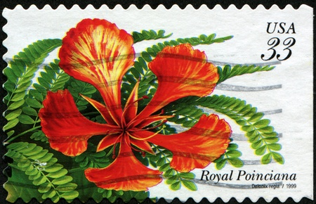 UNITED STATES - CIRCA 1999: A stamp printed in United States shows flower Royal Poinciana - Gelonix Regia, circa 1999 Stock Photo - 8330219