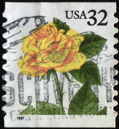 USA - CIRCA 1997 : A stamp printed in USA shows coral yellow  rose, circa 1997 Stock Photo - 8381388