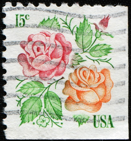 USA - CIRCA 1978: A stamp printed in USA shows two roses, circa 1978 Stock Photo - 8381398