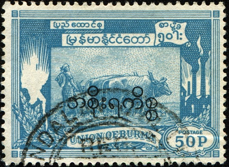 BURMA - CIRCA 1954: A stamp printed in Union of Burma (British colony) shows farmer tills the ground on bulls, circa 1954 Stock Photo - 8494927