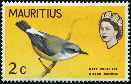 MAURITIUS - CIRCA 1995: A stamp printed in Mauritius shows Grey white-eye - Oiseay Manioc, circa 1995