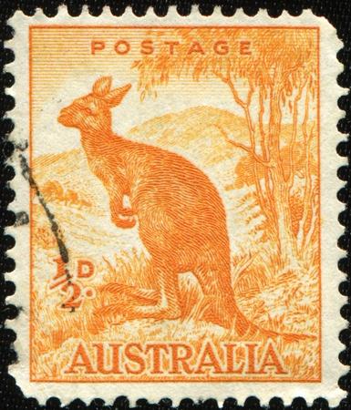 perforated stamp: AUSTRALIA - CIRCA 1937: A stamp printed in Australia shows Kangroo, series, circa 1937