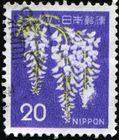 JAPAN - CIRCA 1986: A stamp printed in Japan shows Wisteria, circa 1986 Stock Photo - 8888587