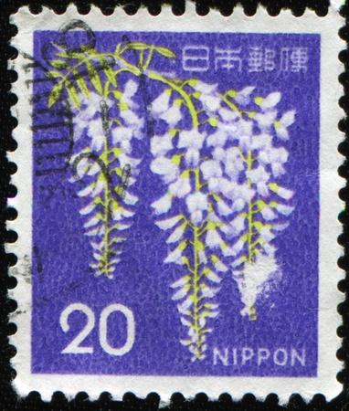 JAPAN - CIRCA 1986: A stamp printed in Japan shows Wisteria, circa 1986 Stock Photo - 8888587