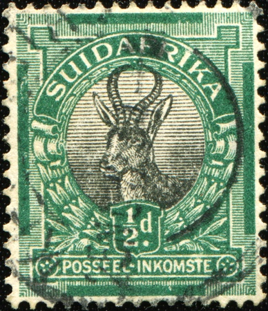 springbok: SOUTH AFRICA - CIRCA 193045: A stamp printed in South Africa shows Springbok (antelope), circa 193045
